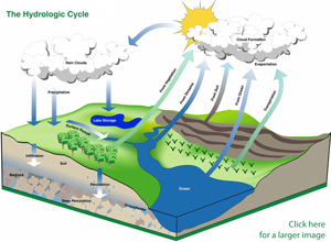The Hydrologic Cycle championed by SuDS